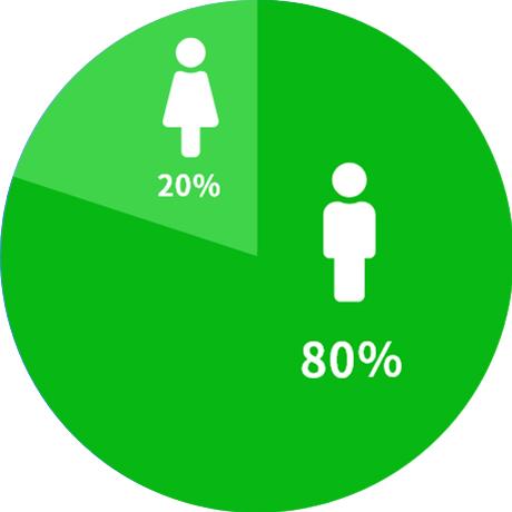 男 80% 女性 20%
