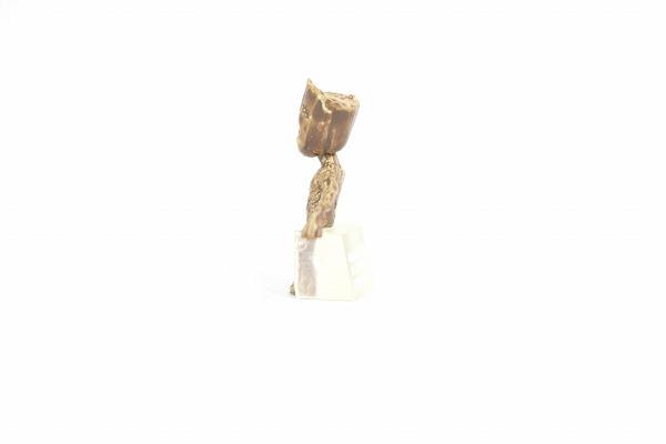 S.H.フィギュアーツ ロケット&ベビー・グルート ガーディアンズ・オブ・ギャラクシー リミックス vol.2 レビュー 全身