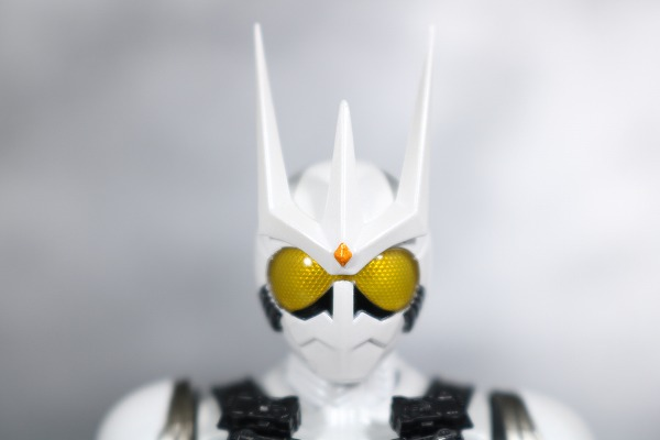 S.H.フィギュアーツ 仮面ライダーエターナル 真骨彫製法 レビュー 全身