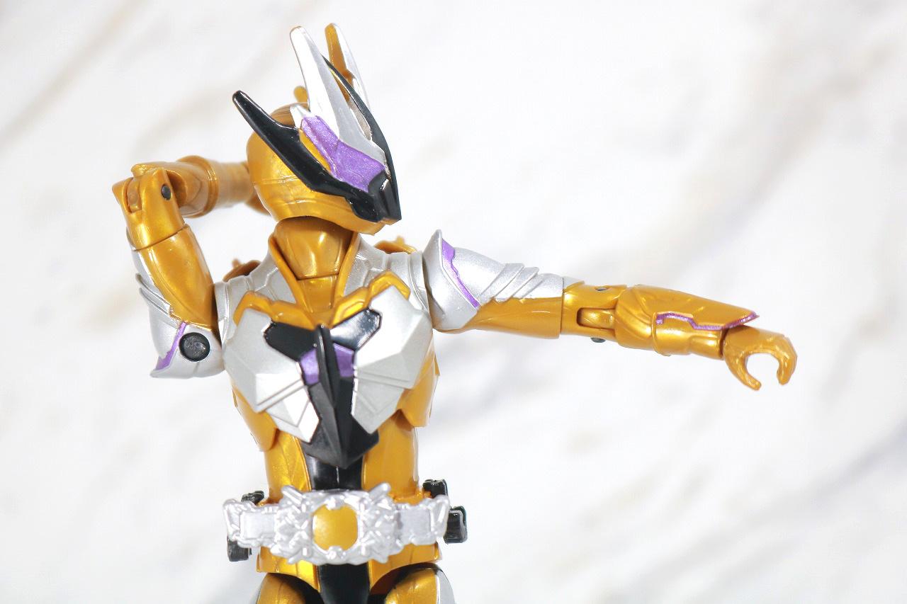 RKF RIDER KICK'S FIGURE 仮面ライダーサウザー レビュー 可動範囲