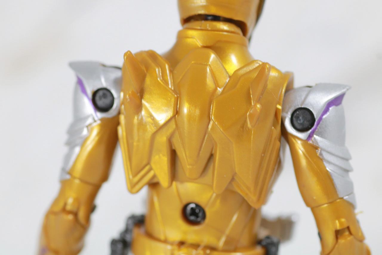 RKF RIDER KICK'S FIGURE 仮面ライダーサウザー レビュー 全身
