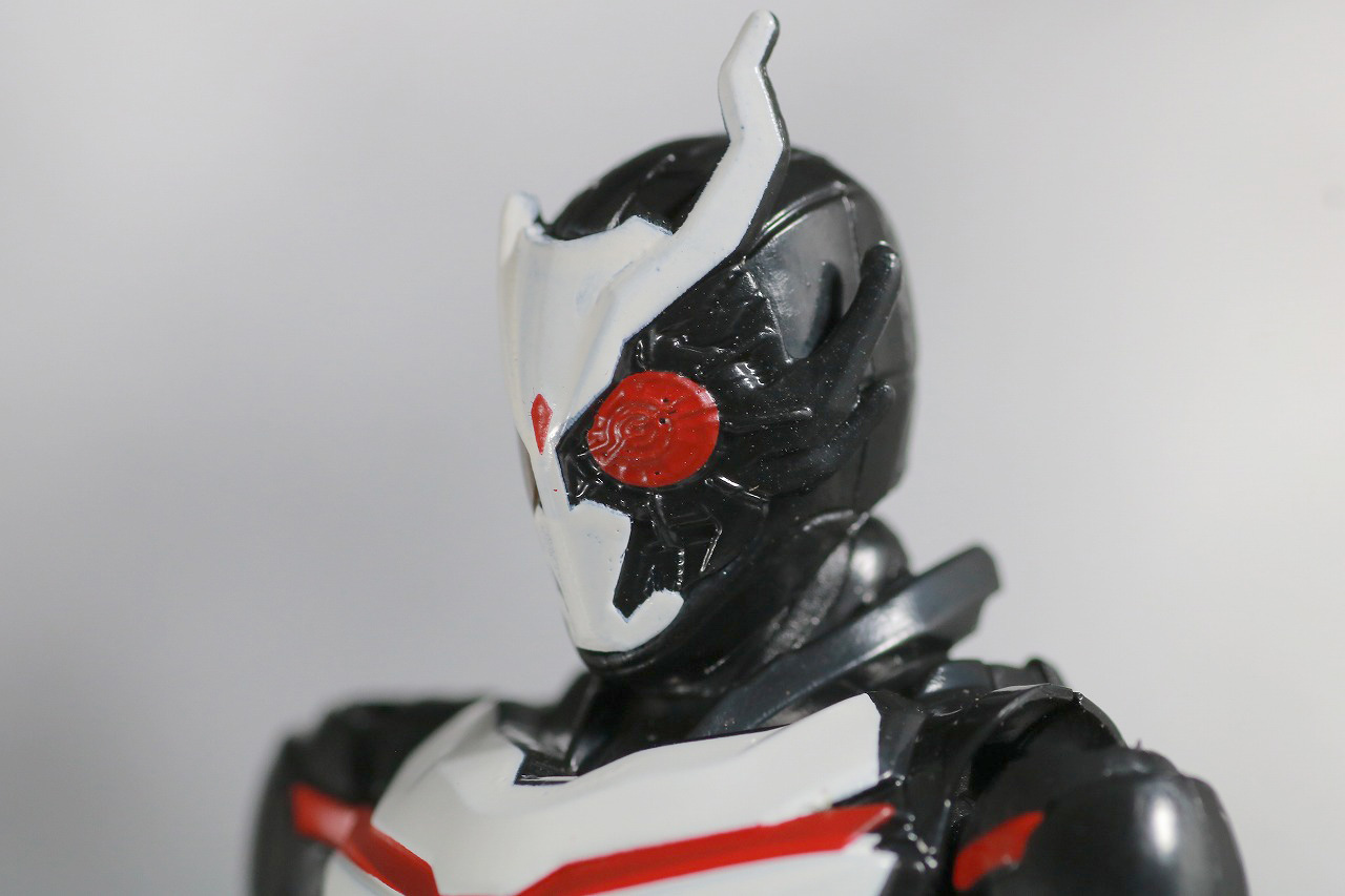 RKF 仮面ライダーアークワン シンギュライズセット レビュー 全身