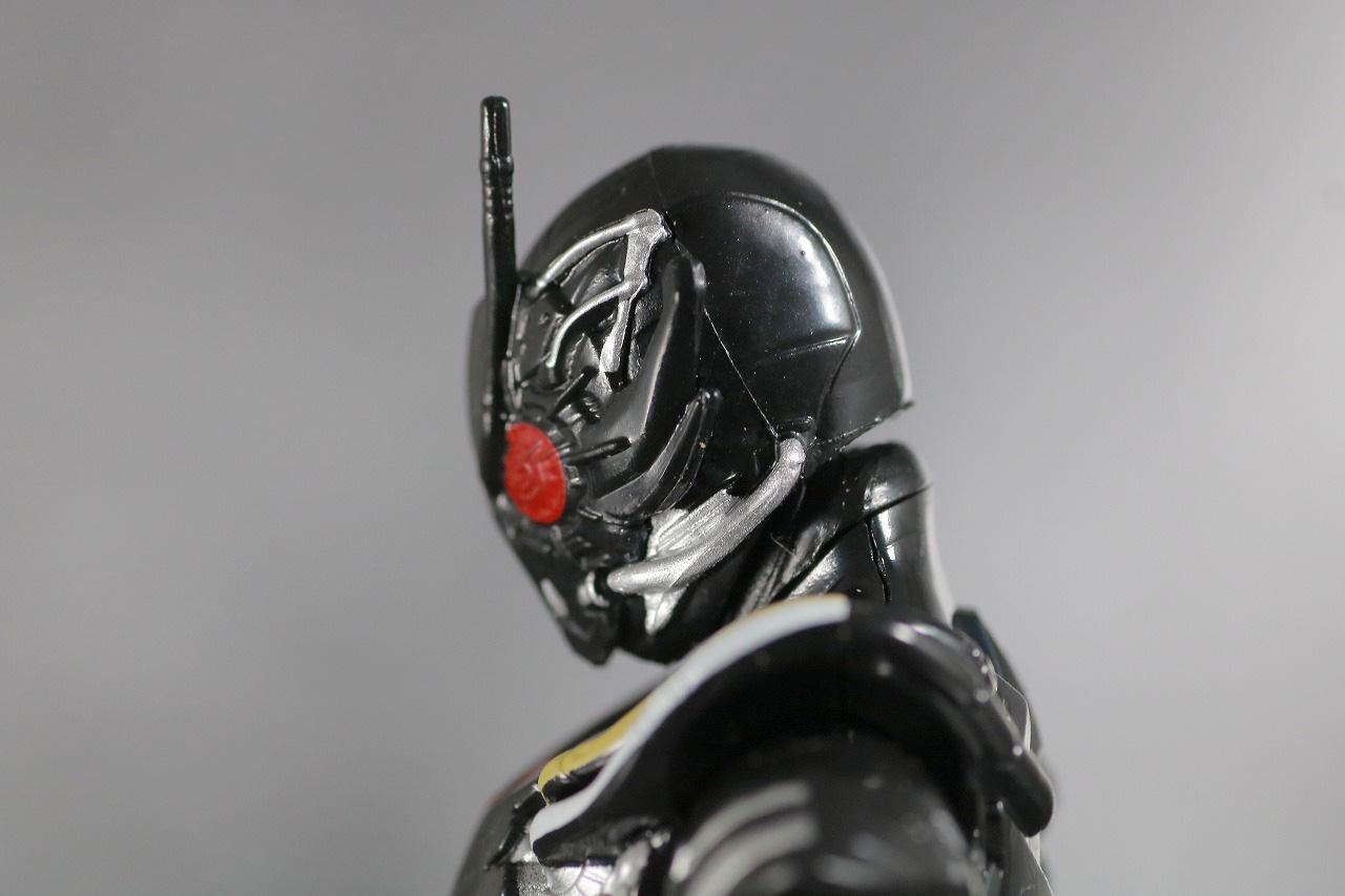 RKF 仮面ライダーアークワン シンギュライズセット レビュー 可動範囲