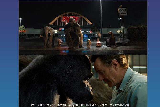 2分で泣ける!ディズニー映画『ゴリラのアイヴァン』日本語版ロングトレーラーが本邦初公開!