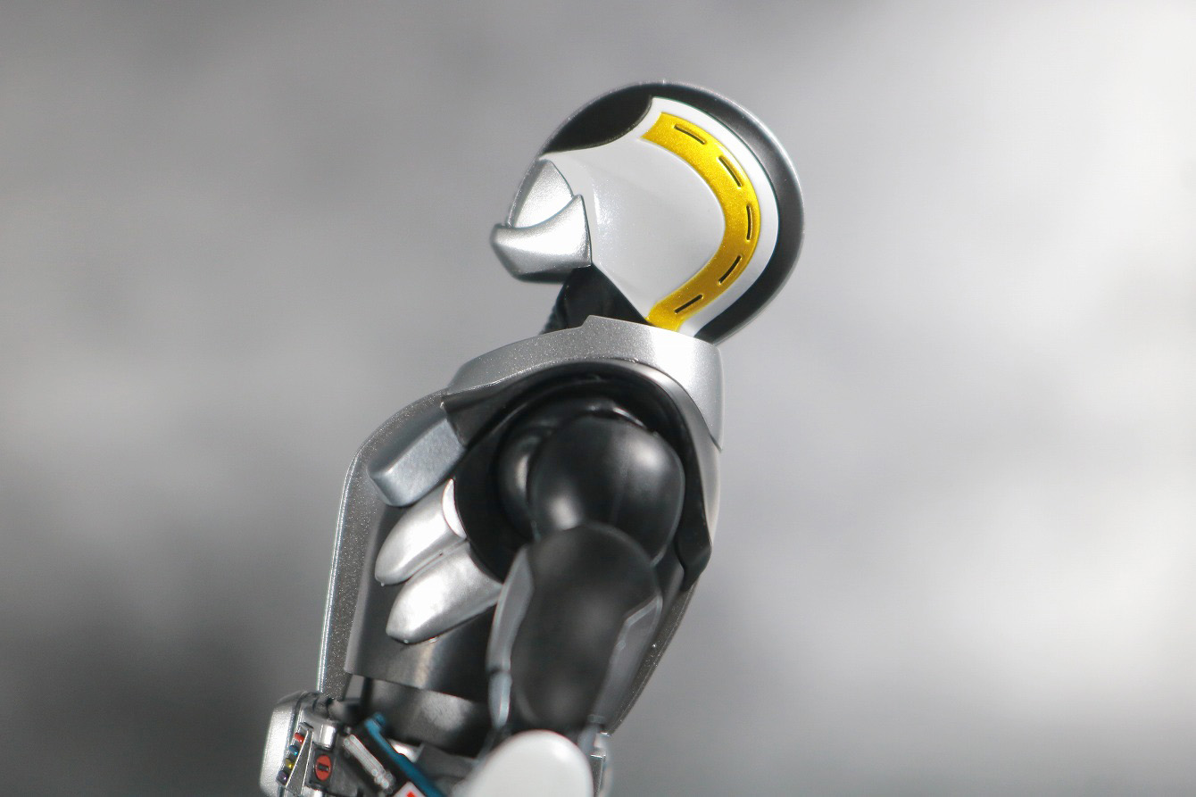 S.H.フィギュアーツ 仮面ライダー電王 プラットフォーム 真骨彫製法 レビュー 可動範囲 首後ろ可動