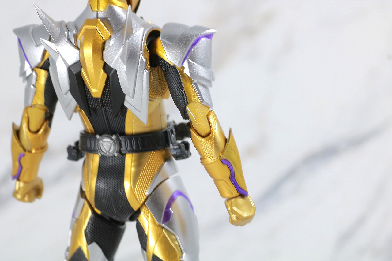 S.H.フィギュアーツ 仮面ライダーサウザー レビュー 本体