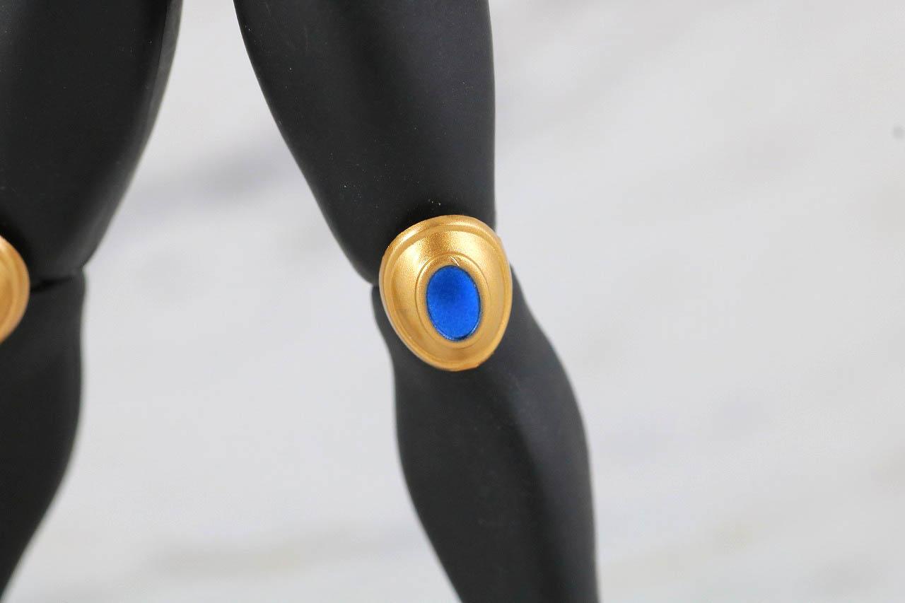 S.H.フィギュアーツ 仮面ライダークウガ ドラゴンフォーム 真骨彫製法 レビュー 本体