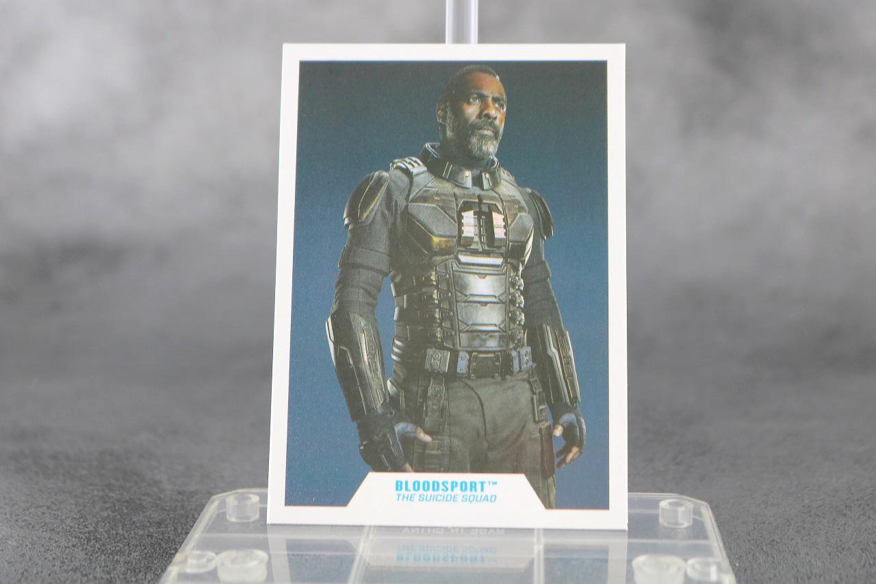 DCマルチバース ブラッドスポート レビュー 付属品 キャラクターカード